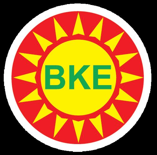 https://cdnsky.dichvuso.vn/bke-solar.com/upload/images/admin-logo/Picture1(1).png